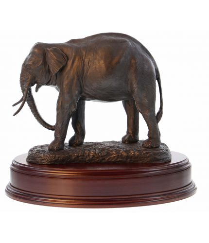 An Indian Elephant presentation and display sculpture on its own oval wooden base. We include an engraved brass plate if required. You can also select hand painted, or silver.